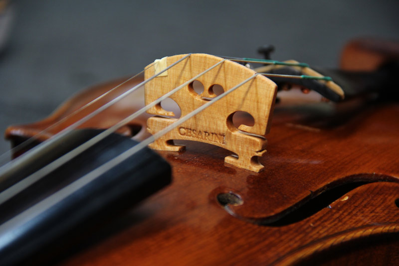 bridge for violin
