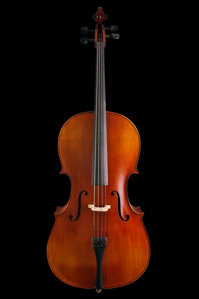 Studio cellos