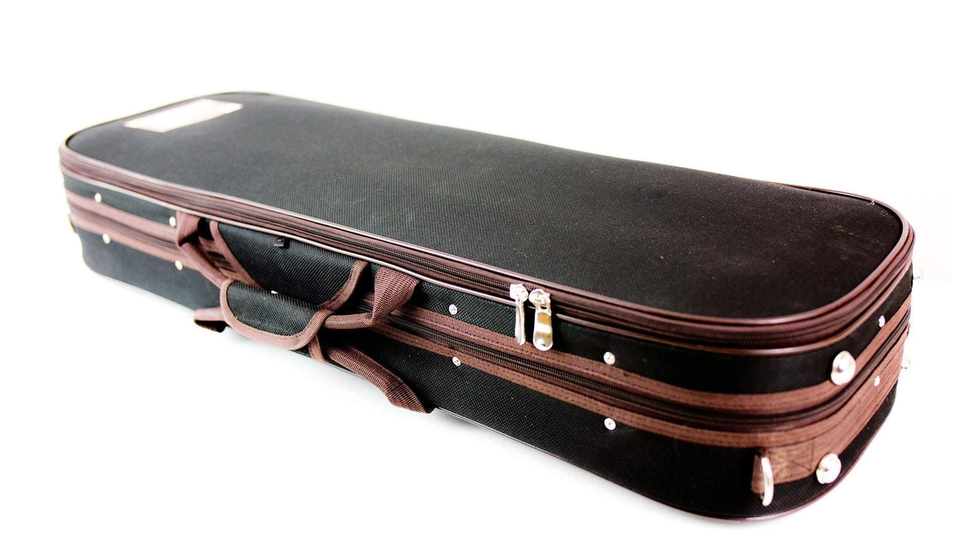 Custodia Professionale per violino