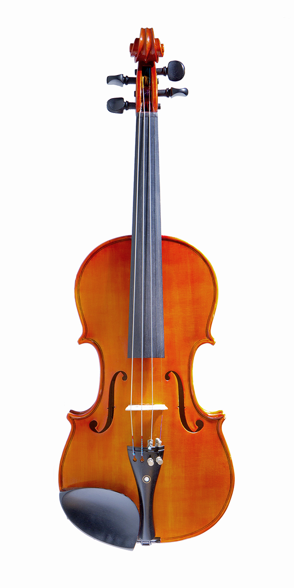 Violino artigianale Cesarini, tavola