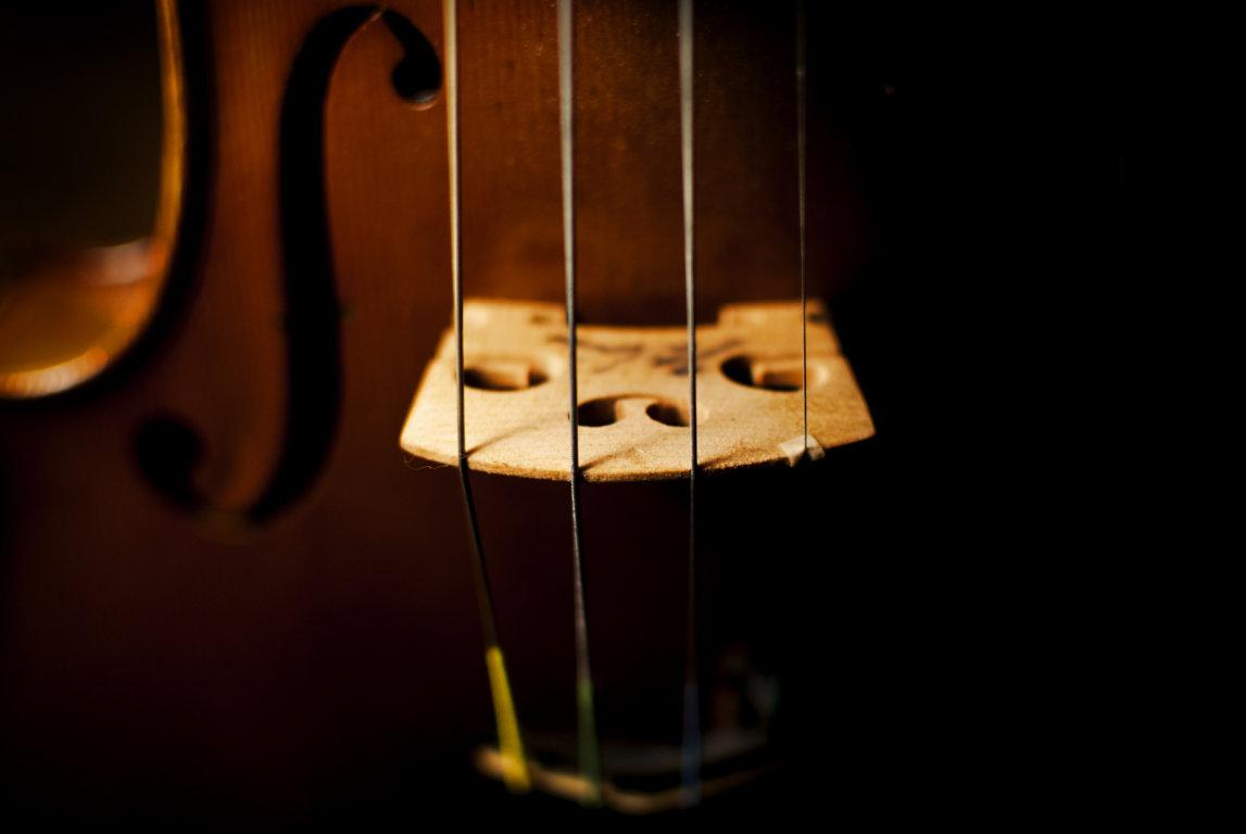 Violin bridge tuning, luthier services