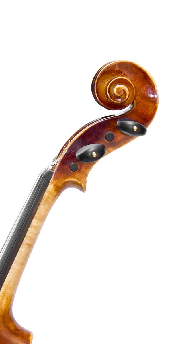 Violino professionale Wilson, riccio