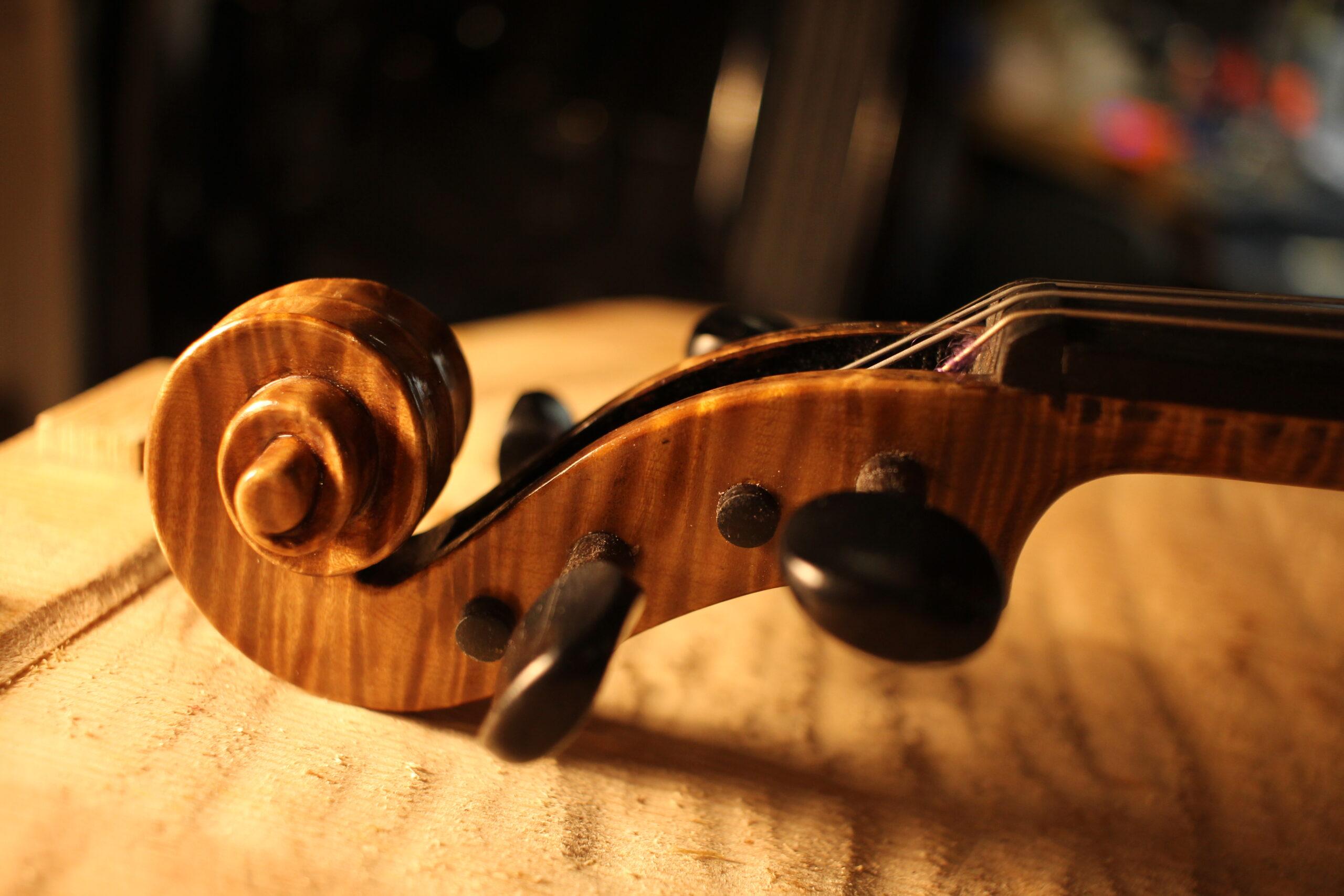Strings mounting violin