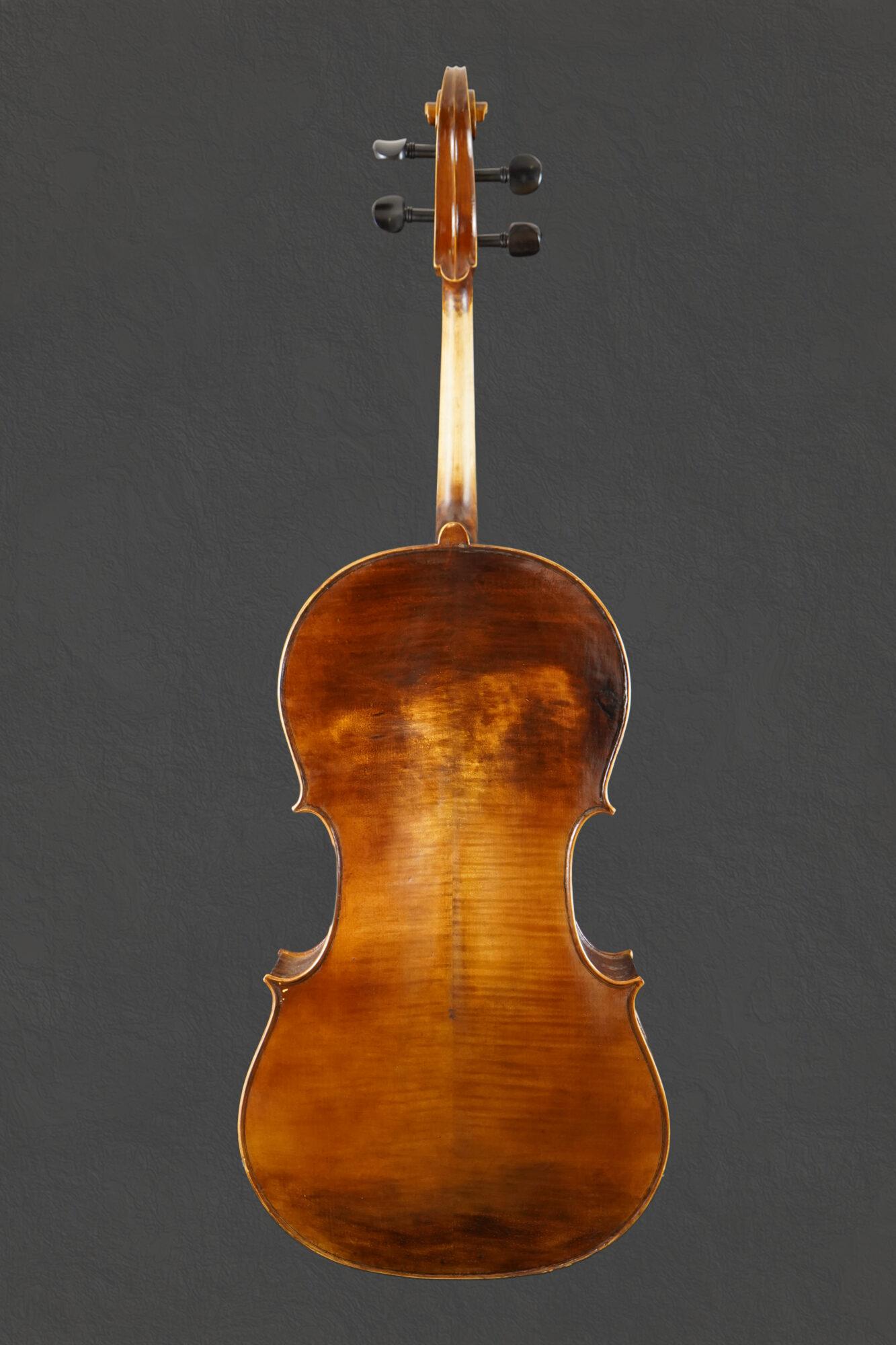 violoncello cesarini, fondo