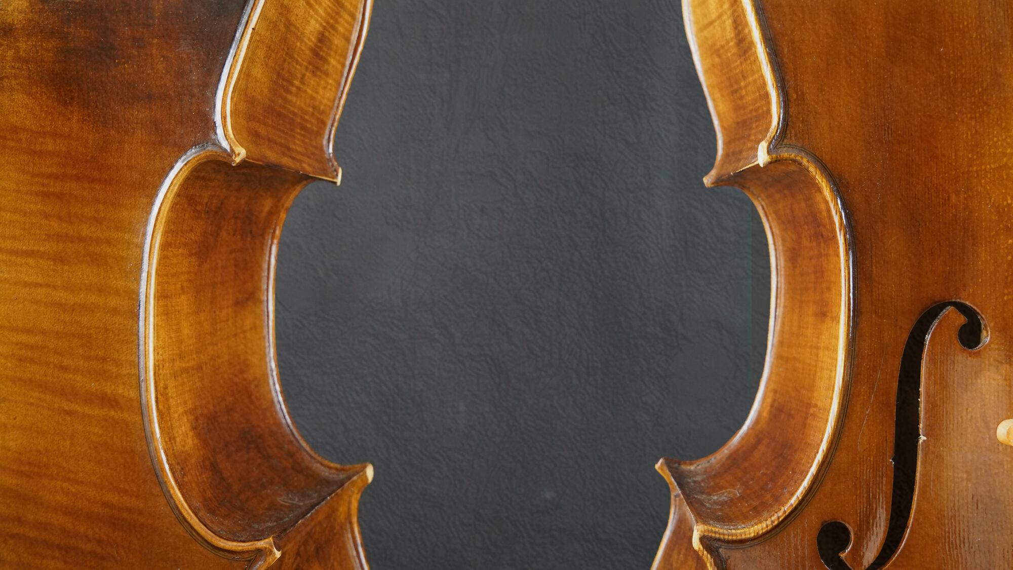 violoncello cesarini, dettagli